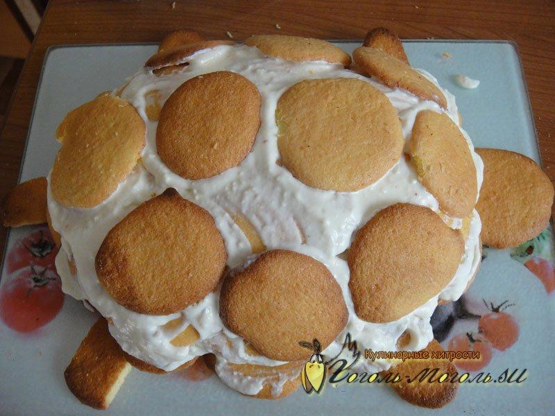 как красиво сделать торт черепаха фото жара побережье смягчается